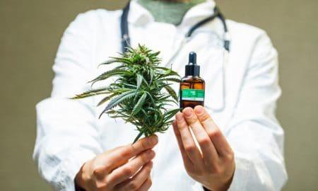 ¿Cambiará la OMS su postura del cannabis empleado como recurso terapéutico?