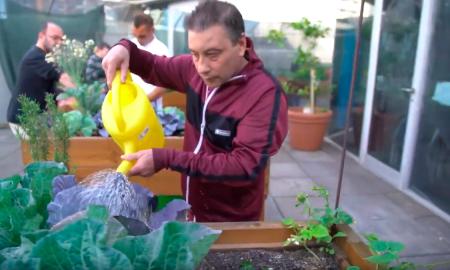 Más de medio centenar de pacientes se benefician de los efectos terapéuticos del huerto ecológico del Centre Fòrum del Hospital del Mar